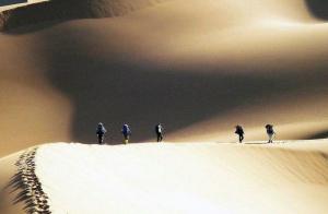 为何经常旅行的人更可能成功?