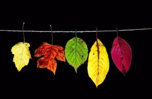 色彩心理学:影响人情绪的颜色